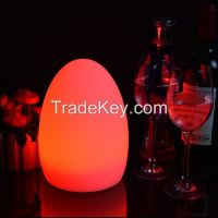 Egg Shaped Led Table Lamp With RGB Color Change Light