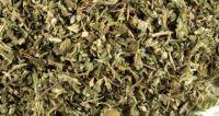 High quality damiana leaf extract powder