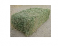 High Protein Timothy Hay For Animal Feeds