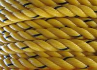 PP DANLINE ROPE, HDPE / PE MONOFILAMENT ROPE, NYLON ROPE, RECYCLE ROPES