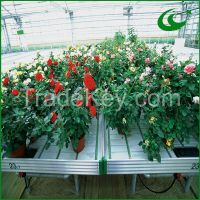 Flood tray metal growing bench system
