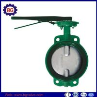 Cast Iron Body Stainless Steel Disc Butterfly Valve