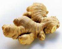 Ginger: Dry and fresh