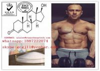 Anabolic Steroid Powder Testosterone Acetate