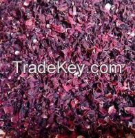hibiscus flower (Hibiscus sabdariffa )