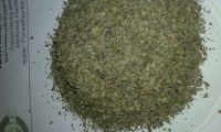 basil crushed( Ocimum basilicum)