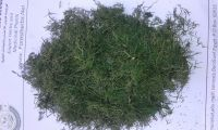 dill tips ( machine dry )