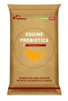 Equine Probio(PBW-EH)