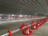Broiler chicken house and rearing equipment system
