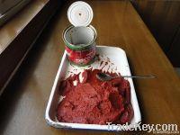 tomato paste /tomato ketchup