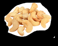 Best Quality raw Cashew for sale WW320