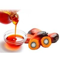 RBD  Crude Palm oil from