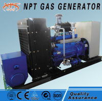 Customized 375kVA 300kw generator gas engine power plant for sale