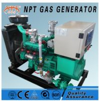 CE approved 10 kw generator biomass fuelled power plant