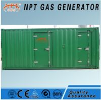 Customized 250 kw biomass gasification power with generator