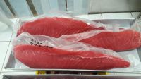 Tuna Loin From Maluku
