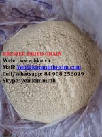 BREWER DRIED GRAIN RICH PROTEIN FOR COW/DAIRY COW/ANIMAL FEEDS