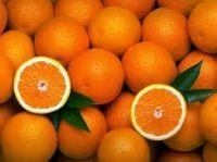 Fresh Natural 100% Organic Orange