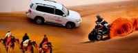 desert  safari dubai by dream night tours