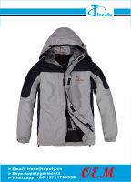 customized high quality polyester winter jacket