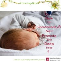 Red Castle Cocoonababy Sleeping Nest Sleep Positioned Mattress