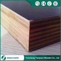 Film Faced Plywood Poplar Core