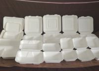 """Biodegradable Sugarcane Bagasse Box Clamshell--8"""" x 6"""" 2-C Hinged Container"""
