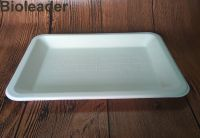 High Quality Leakproof FDA Standard Biodegradable Sugarcane Bagasse Food Disposable Tray
