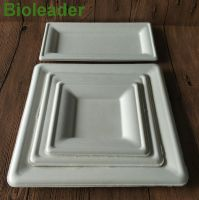 100%Eco-friendly Hot Sale Stocked Microwavable 100% Biodegradable 6 Inch Disposable Sugarcane Bagasse Round Plate