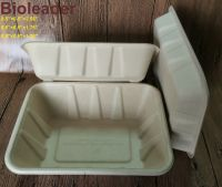 FDA Standard Disposable Biodegradable Sugarcane Bagasse Bamboo Fiber Food Tray