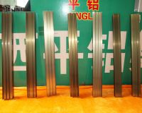 Electrophoretic Aluminum Profiles for Doors and Windows