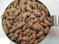 Beans,Black beans , Butter Beans , Broad Beans, Cocoa beans, Fresh Beans, Lima Beans, Mung Beans, Soybeans, Vanilla Beans,