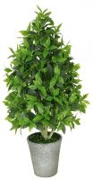 Indoor Decorative Artificial Succulent Plant