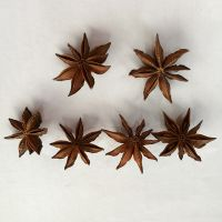 new harvest 99% purity natural autumn or spring star anise