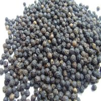 100% Natural Cleaned Dried whole White And Black Pepper