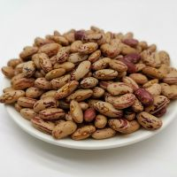 Cranberry Beans for sale