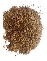 Larix sibirica seeds