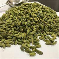 Best Quality Fresh Green Cardamom