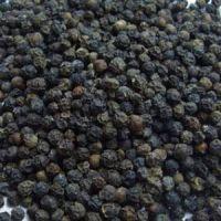Organic White Pepper Black Pepper Seeds