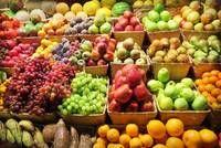 Fresh Banana, Grapes, Apples, Straw Berries, Pineapples, Oranges, Mangoes, Mangosteen