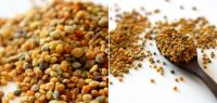 100% Natural Bulgarian Pure Bee Pollen High Quality