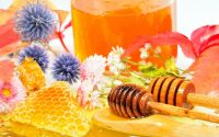 100% Natural Pure Herbal Honey from Bulgaria Ecological Regions High Quality