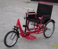 Self-driven Tricycle