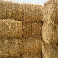 Long wheat straw