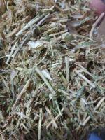 Daal Masoor straw