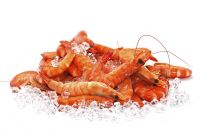 Fresh/Frozen Seafood