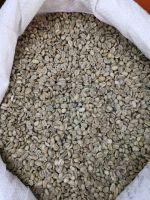 Green Coffee Beans Arabica Plantation AA