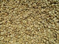 Monsooned Malabar Grade AA Arabica Indan Speciality Green Coffee Beans