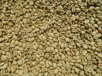Robusta Kaapi Royale Indian Speciality Coffee Beans