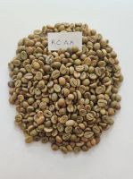 Robusta Parchment and Robusta Cherry Green Coffee Beans